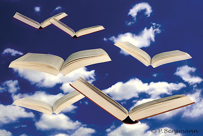 »Flying Books«